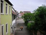 Blick auf die Altstadt von Speyer